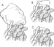 Antibody Interactions With Proteins, Peptides & Haptens